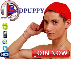 Visit Badpuppy